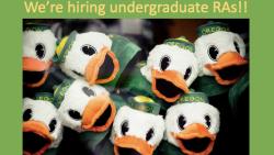 We're hiring undergraduate RAs!