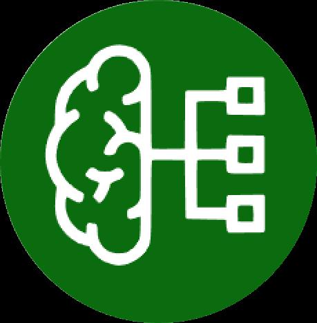 Systems neuroscience